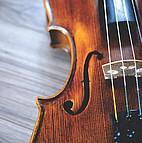 Voir l'evenement : Concerts d'été au Conservatoire