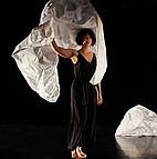 Voir l'evenement : Papiers/dansés